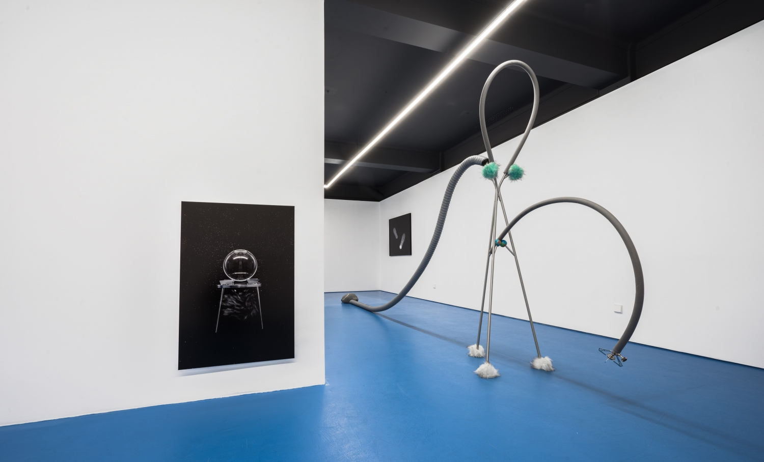 Gaspromanoide (2017) Hat and coat stand KNIPPE, 5 synthetic pom poms, gas burner, multilayer  tubes, polyethylene insulation tube, flexible tube, 2 anti-stress balls, 2  balls Kong, stone from the beach of Castelejo.