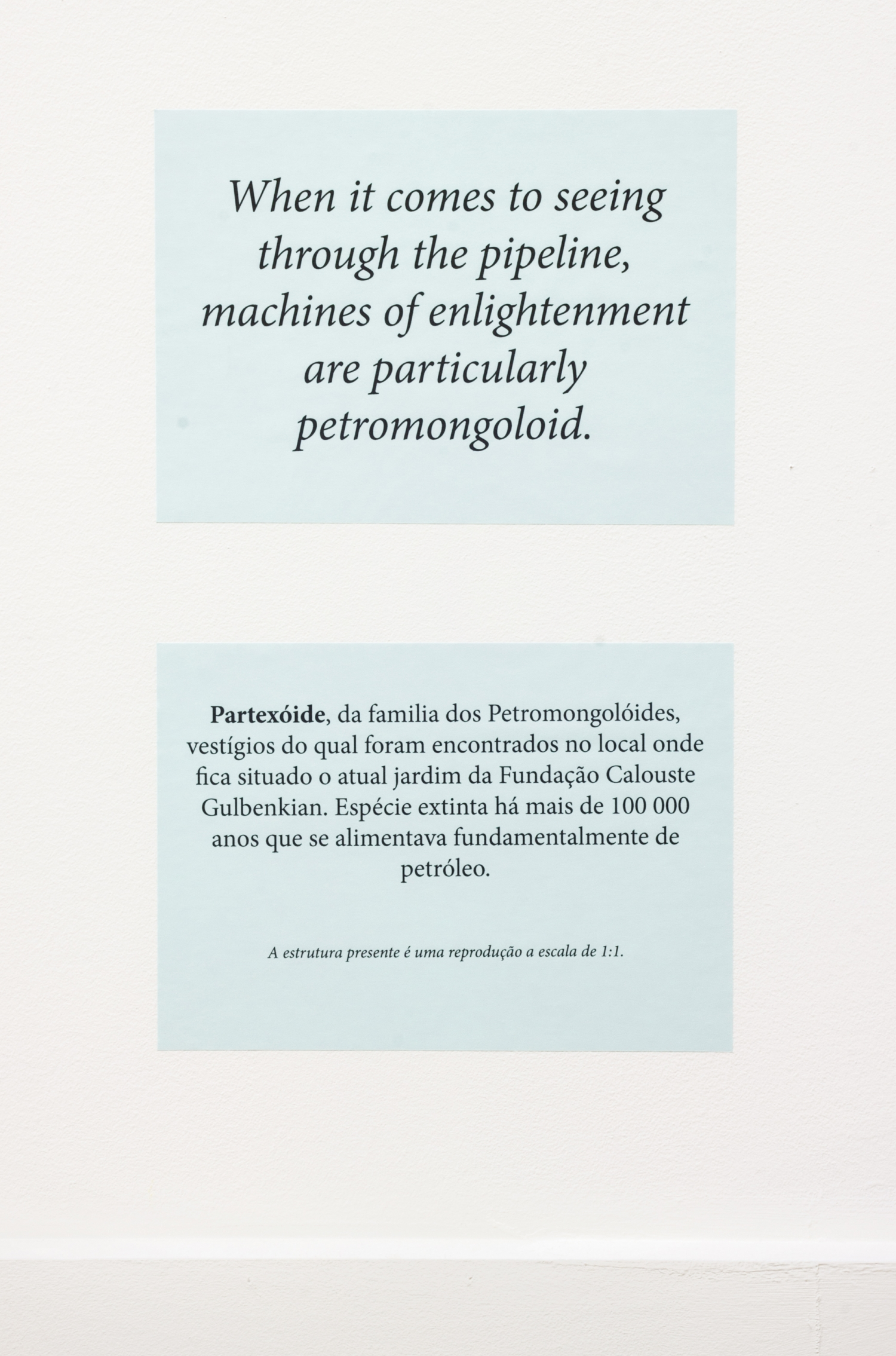 Partexoide was member of the family ofPetro-Mongoloidusremains of which  were found at the garden of Calouste Gulbenkian Foundation. Oil was the main  nourishment of this specie extinguished 100 000 years ago.